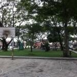 Basketball-Court-and-Children-Playground